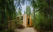 Micro-refuge en forêt